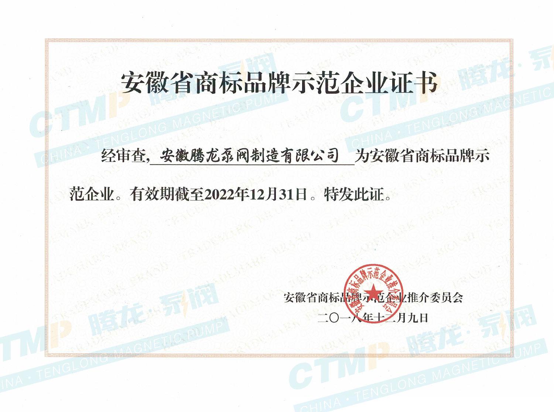 安徽省商标品牌示范企业