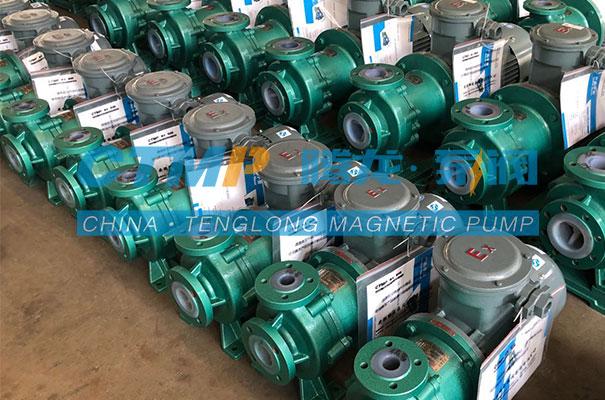 腾龙一批TMF氟塑料磁力泵发往济宁长胜新材料