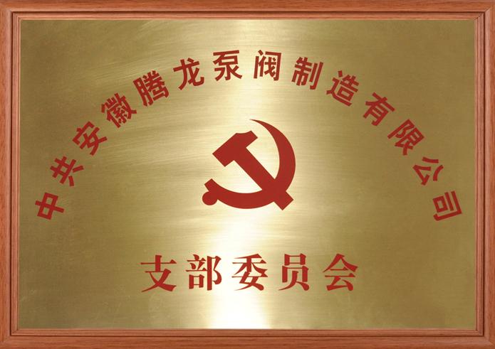 安徽腾龙泵阀党支部